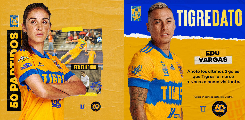 bc-mexico-tigres-3